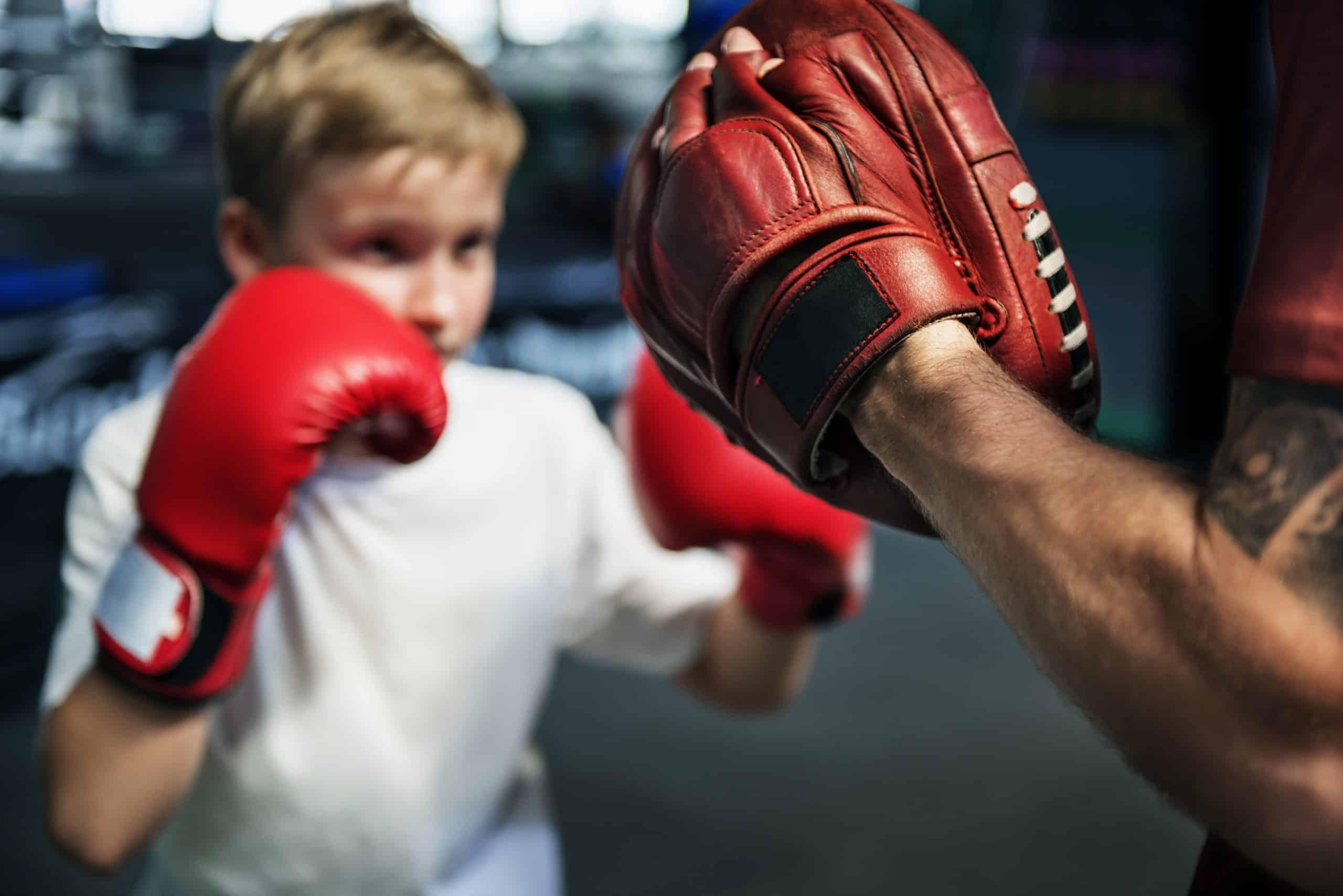 Best Boxing Focus Mitts