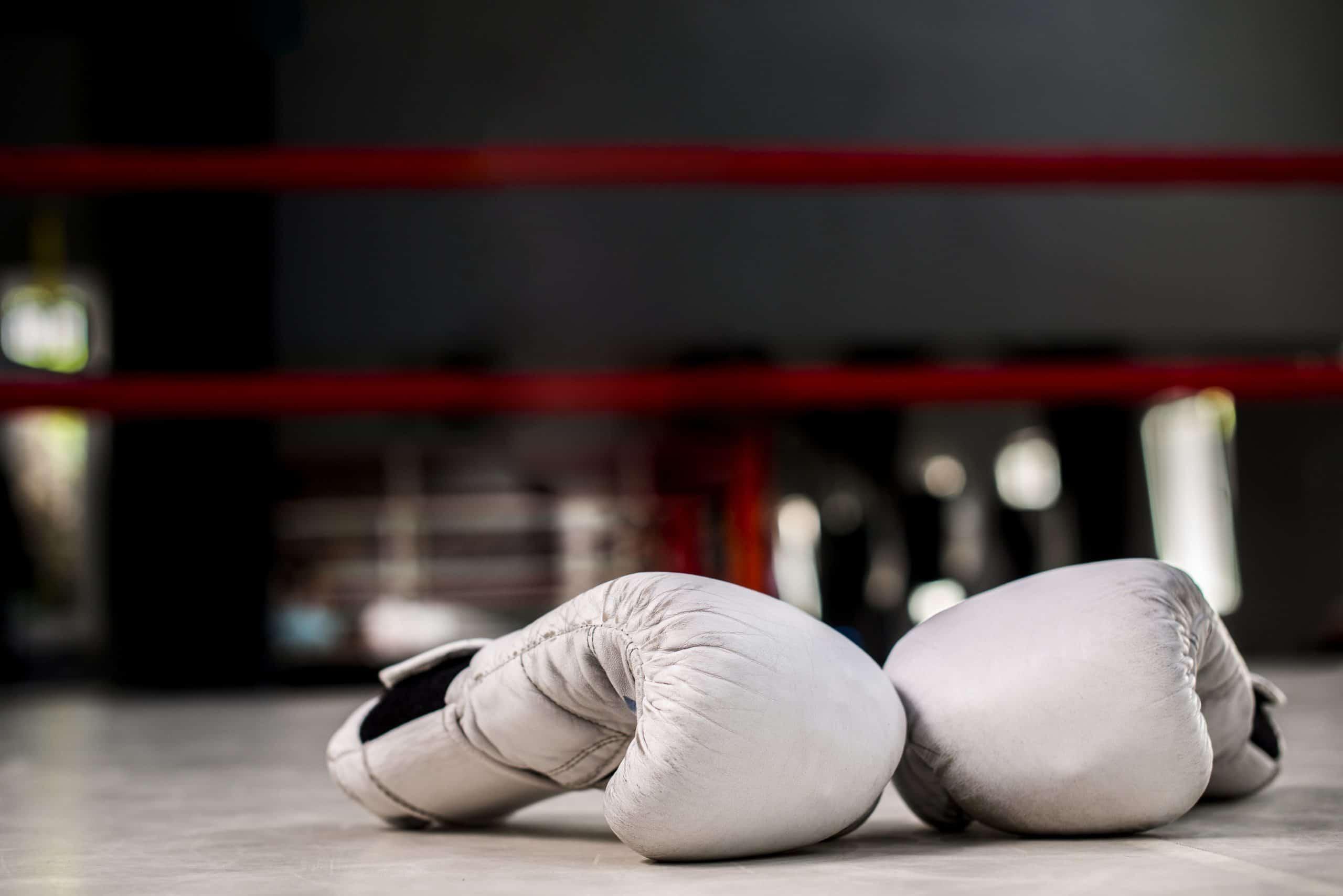 best ufc gloves